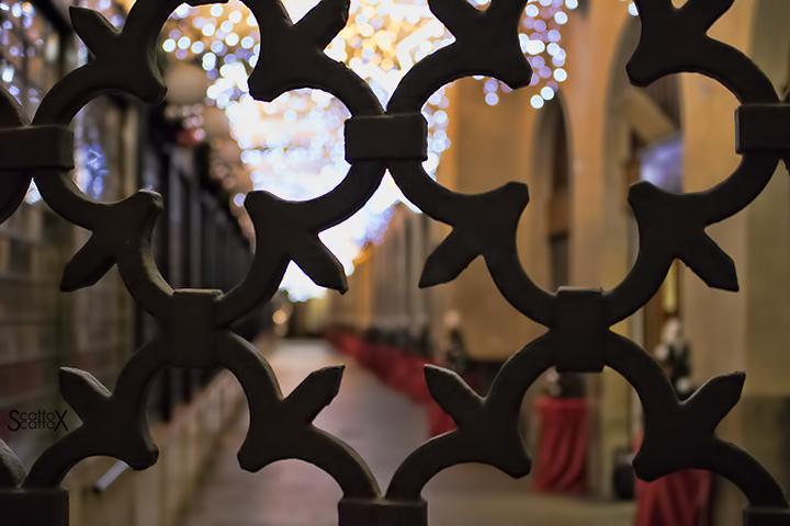 Padova e la magia del Natale: sotto il Salone