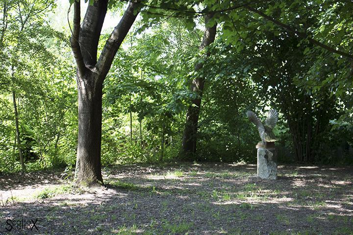 evento sophia - il bosco di Sant'Angelo