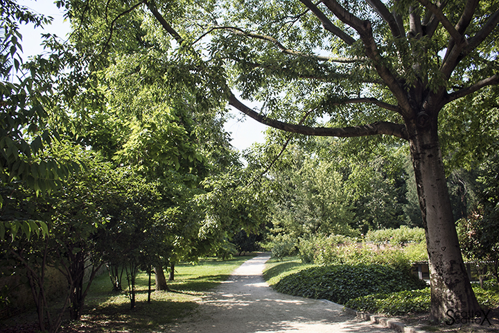 Parco Treves de Bonfili - Ingresso