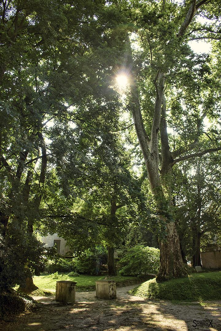 Parco Treves de Bonfili - L'ingresso dell'antica serra calda