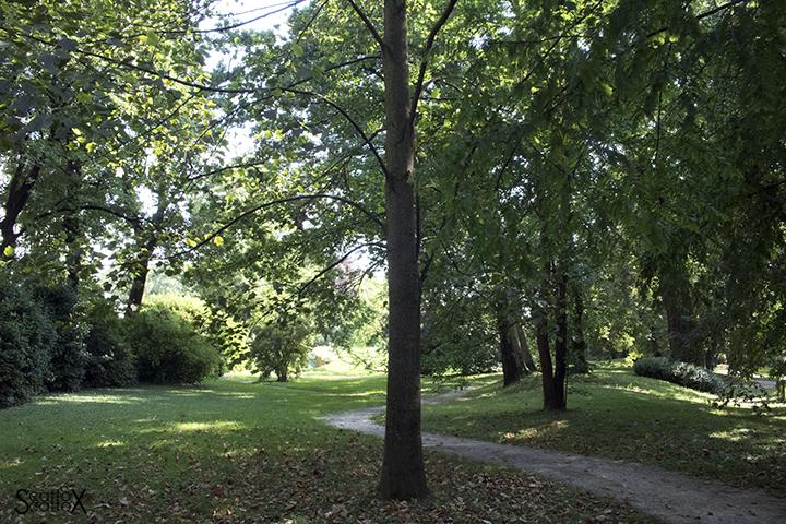 Parco Treves de Bonfili - Veduta