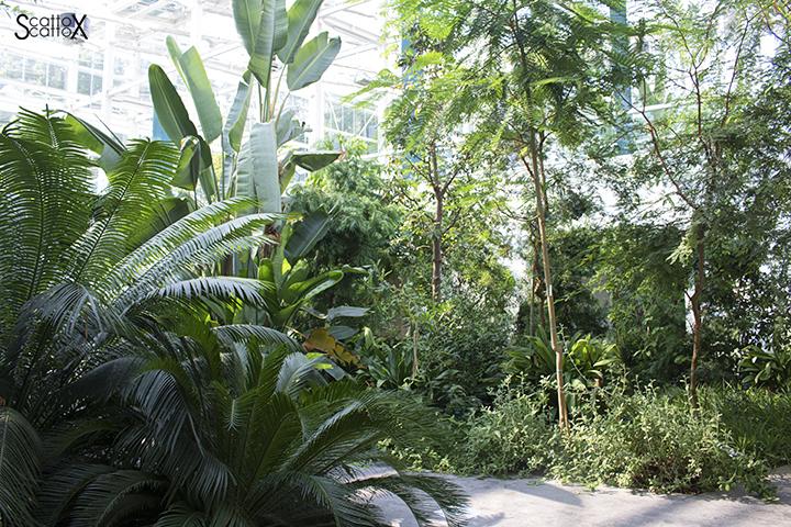 Orto Botanico di Padova: il Giardino della Biodiversità