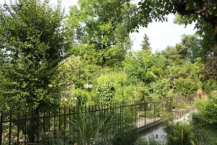 Orto Botanico di Padova: parte antica