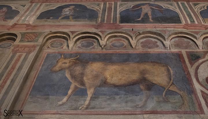 Il Palazzo della Ragione di Padova: insegna del Tribunale del Bue