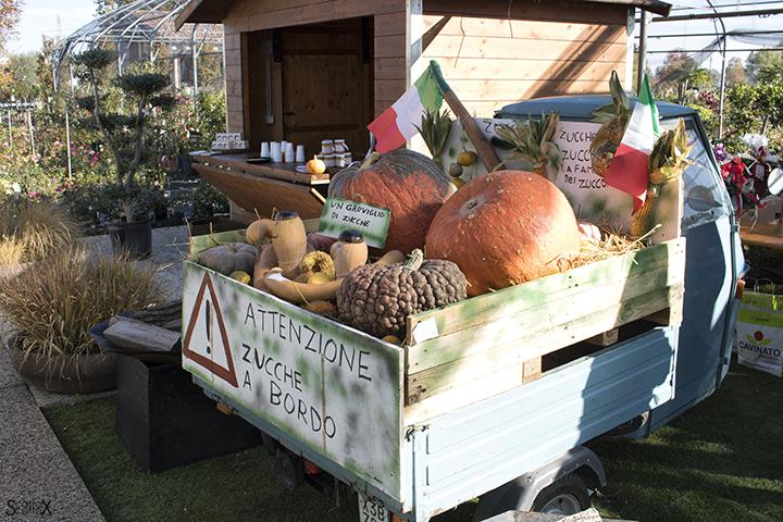 Garden Cavinato: un bel carico di zucche