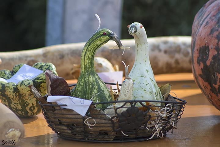 Garden Cavinato: un nido di zucche