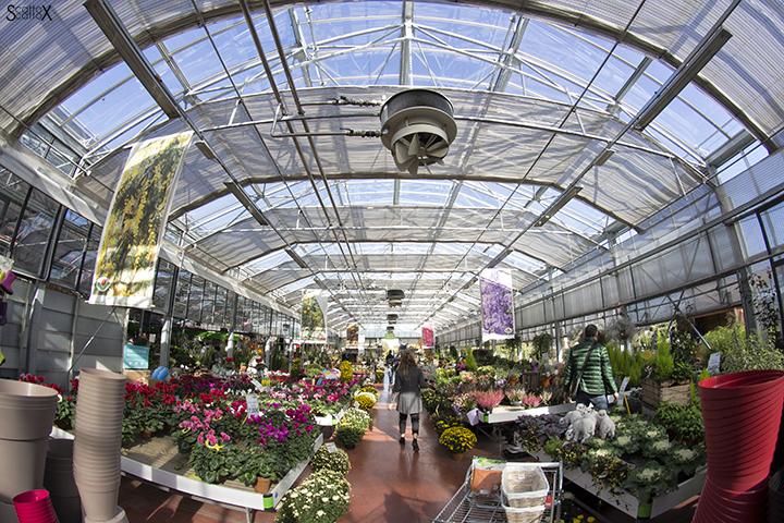 Garden Cavinato: una delle serre