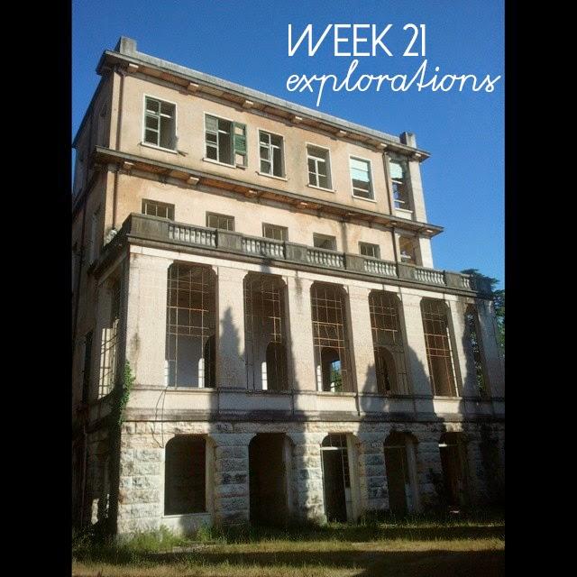 21-52 week project