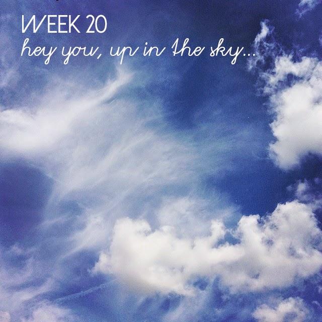 20-52 week project