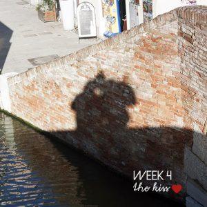 4-52 week project