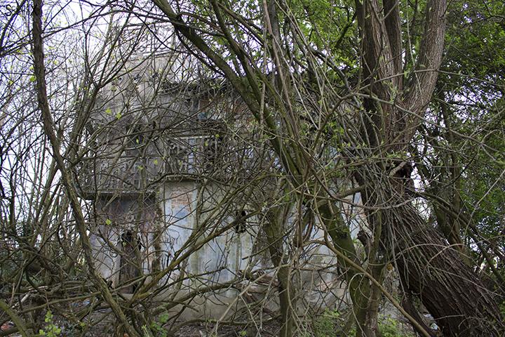 La casa delle favole di Nelly e Alice