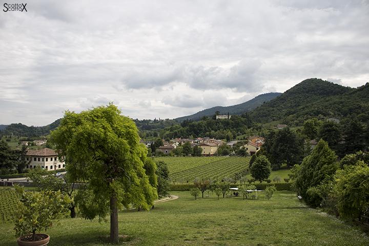 Villa dei Vescovi: il parco