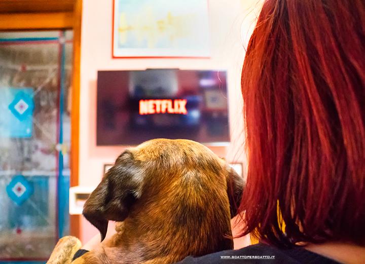 Le mie serie preferite su Netflix