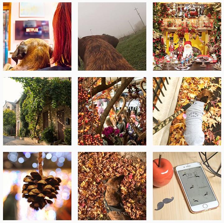 App fotografiche per Instagram: il mio Instagram feed