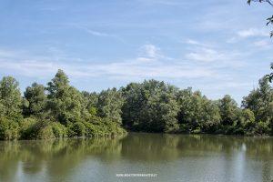 Parco dei Laghetti di Martellago