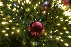 Le luci di Natale a Padova