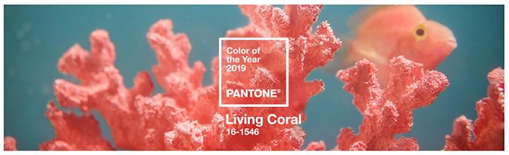 Living Coral: il colore del 2019 di Pantone