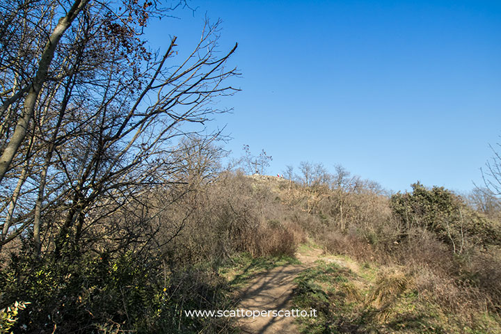 Sentiero del Monte Ceva: cima del Monte